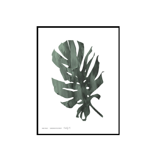 Haily Hill's - 몬스테라 no.01 (Monstera no.01)
